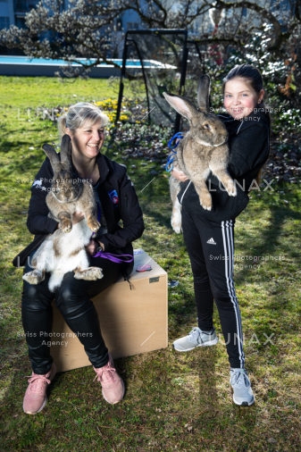 KaninchenOsternHaseHasen